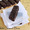 Chocolate And Coconut Bar Recipe | Easy Energy Bar Recipes