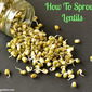 How To Sprout Mung Beans / Lentils