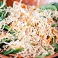 Vegan Sesame Ginger Salad Stir Fry – House Foods Tofu Shirataki Noodles – Low Fat Spaghetti