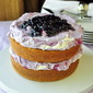 Blueberry Fool Butter Cake