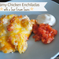 Creamy Chicken Enchiladas with a Sour Cream Sauce