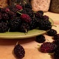 Foraged Mulberries and Homemade Jam
