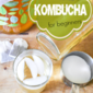 Kombucha for Beginners
