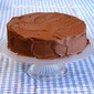 Buttermilk Vanilla Cake with Old Fashioned Chocolate Frosting