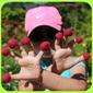 Raspberry and kiwi flowers – easy dessert