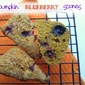Pumpkin Blueberry Scones