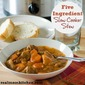 Five Ingredient Slow Cooker Stew