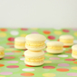 Custard cream macarons