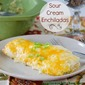 Flashback Friday – Sour Cream Chicken (or Turkey) Enchiladas