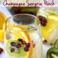 Champagne Sangria Punch