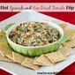 Hot Spinach and Sun Dried Tomato Dip