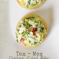 Tex-Mex Chicken Salad Bites #OXO #AppetizerWeek