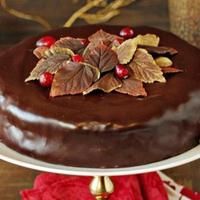 Chocolate Cranberry Fudge Cake
