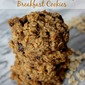 Gluten-Free Oatmeal Chocolate Chip Breakfast Cookies