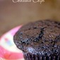 Dark Chocolate Muffins with Chocolate Chips