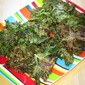 Smoky Spiced Kale Chips