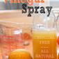 All Purpose All NATURAL Citrus Vinegar Spray