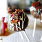 Bacon, Bourbon and Chocolate Cake Balls – Triple Threat