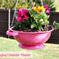 How to Make a DIY Hanging Colander Planter