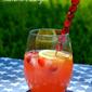 Cranberry Lemon Summer Zinger Cocktail Recipe