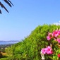 Provence Luxury Resort And Health Tips From A Billionaire~