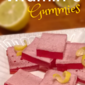 Healthy Homemade Vitamin C Gummies Recipe