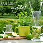 Fresh Mint Mojito Recipe!