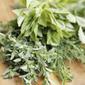 Frozen Herb Starters