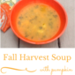 Fall Harvest Soup- vegan