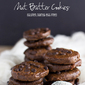 Recipe Connection: Healthier Double Chocolate Nut Butter Cookies (GF, DF, egg-free)