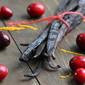 Cranberry Vanilla Chia Jam