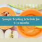 A sample feeding schedule for your baby (6-12 months)
