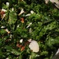 Kale Salad with Almonds + Dates