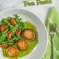 Seared Scallops with Pea Pesto