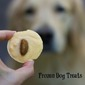 Frozen Homemade Dog Treats & Dog Cakes
