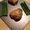 Herb Garlic Marinated Chicken Thighs