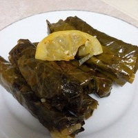Vegetarian Stuffed grape leaves. Also known as Turkish Sarma or Greek Dolmas (olive oil and rice)