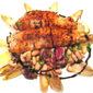 Seared Salmon on Grilled Radicchio & Endive