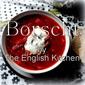 Hungarian Borscht