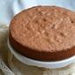 CHOCOLATE ITALIAN SPONGE CAKE