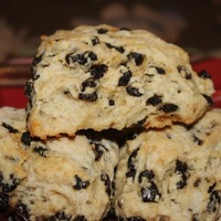 Scottish Currant Scones