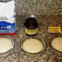 Testing Yeast for Freshness + A Source for Bread-Making Troubleshooting