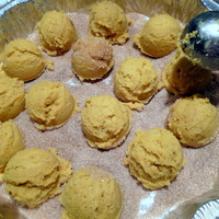 Squash Snickerdoodle shell cookies