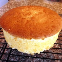 Whip Cream Cake