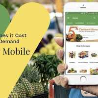 How Much Does It Cost To Build a Grocery Delivery Mobile App?