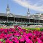 Kentucky Derby and a Mint Julep