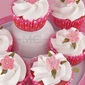 Strawberry Cupcakes and White Chocolate Frosting