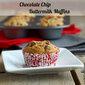 Chocolate Chip Buttermilk Muffins