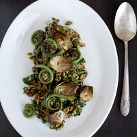 Fiddlehead Fern and Cholla Bud Quinoa Salad