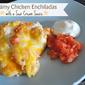 Creamy Chicken Enchiladas with a Sour Cream Sauce
